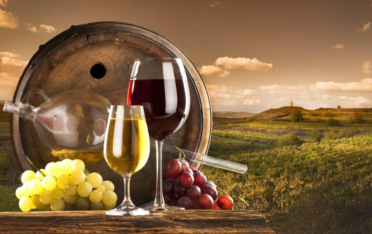 Wine Glass Manufacturers
